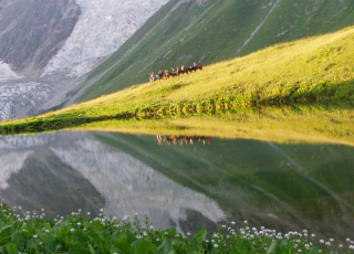Georgia - Enjoy the serenety of Svaneti landscapes on horse back